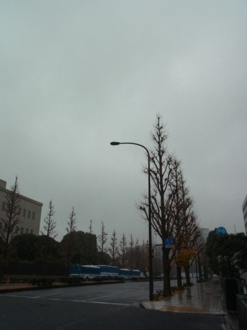2012_1230_101947s