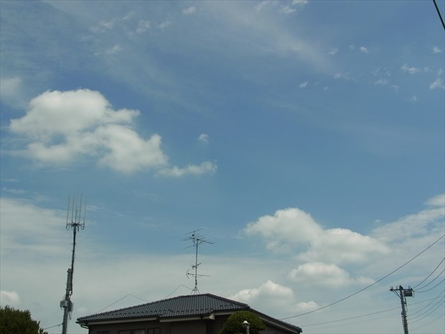 2013_0728_130650_s