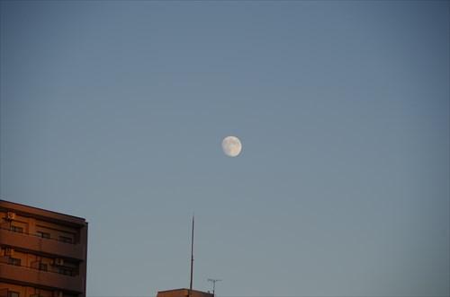 2013_0917_172308_s