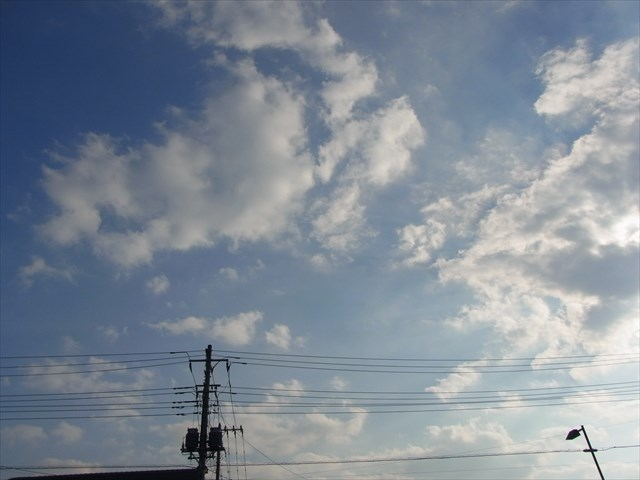 2013_1117_140612_s